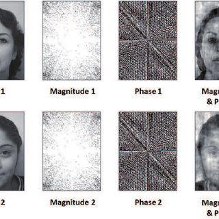 Ginger reccomend Proper facial histogram