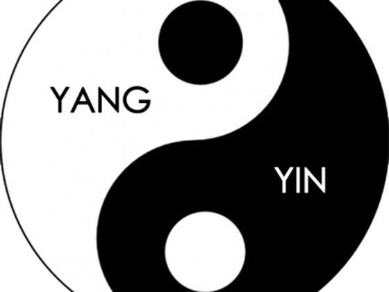 Am i yin or yang