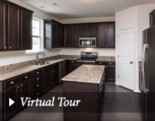 best of Virtual Domination tour homes