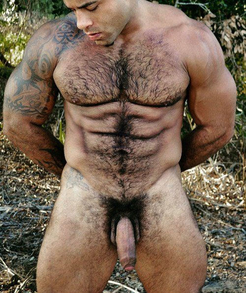 Nude muscular older hairy men excellent and
