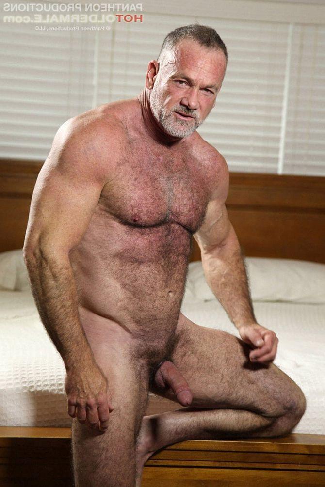 sexy hot naked bears free