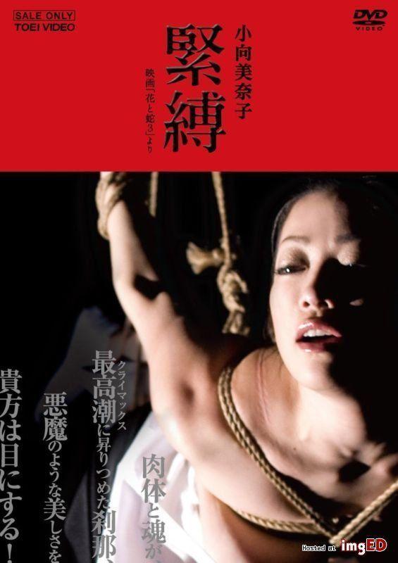 Kevorkian reccomend Japanese electro bondage dvd
