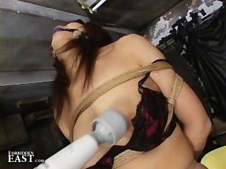 best of Dvd bondage Japanese electro