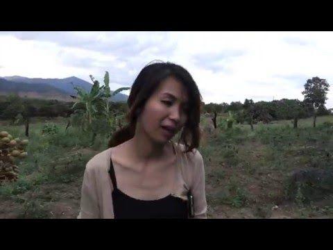 Nonsense! cambodian village teen anal opinion you