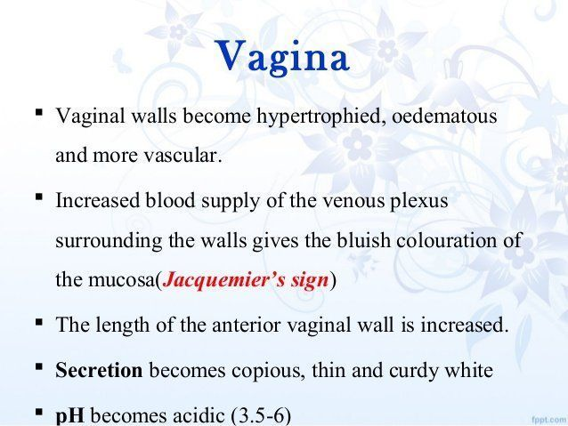 best of Pregnancy Changes to vagina during