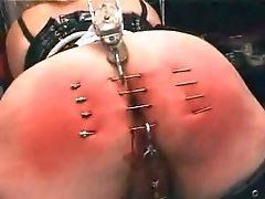 Combo reccomend Bdsm piercing needle tube