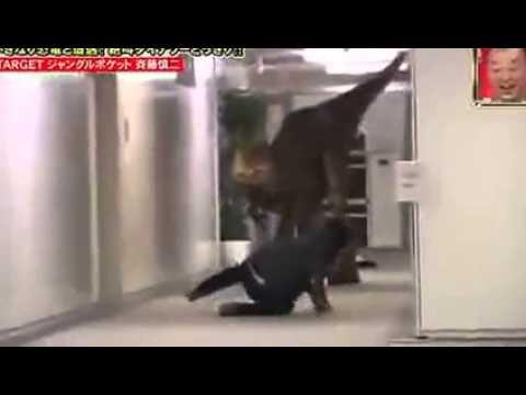 Whisky G. reccomend Japanese joke dinosaur