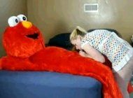 best of Porn Elmo