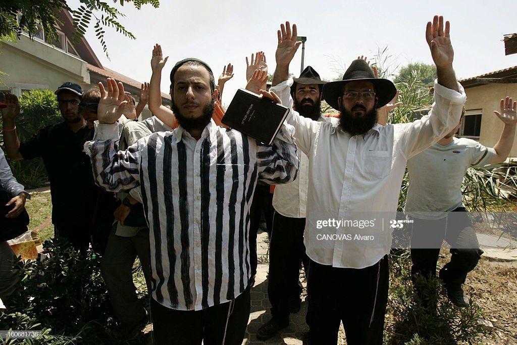 Bear reccomend Gaza strip jew evacuation