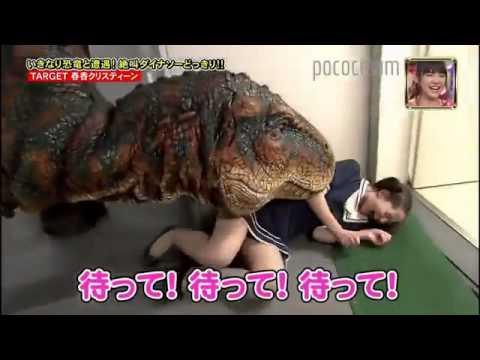 best of Dinosaur Japanese joke