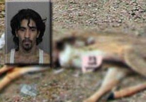 Man arrested for sex with dead deer