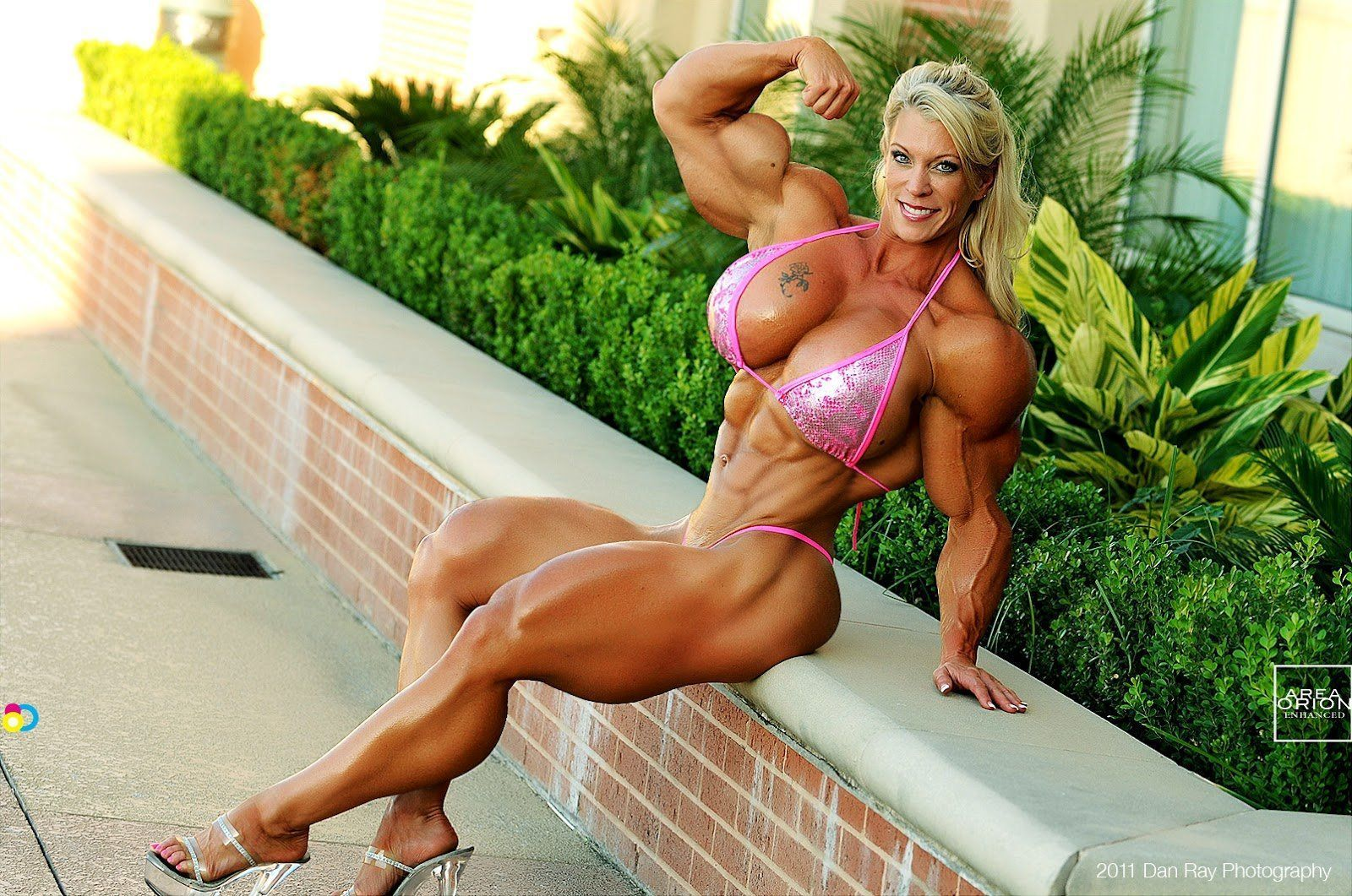 Asian Female Bodybuilder Porn nude big tits muscle women . porn pictures. comments: 4