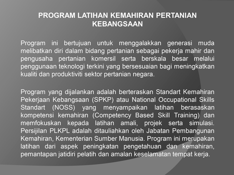 best of Di kerja Projek malaysia tempat melayu