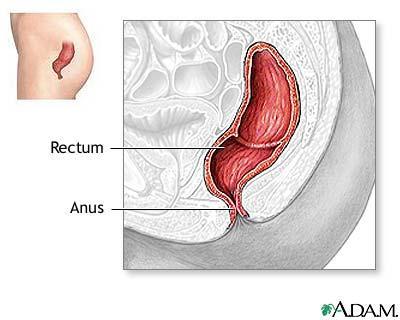 Esquiare reccomend Purplish area on anus